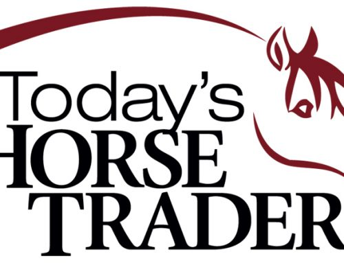 Today's Horse Trader