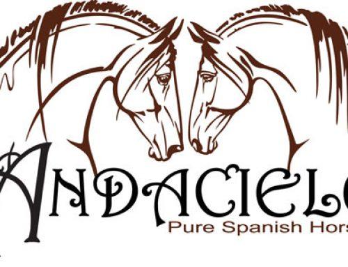 Andacielo Pure Spanish Horses