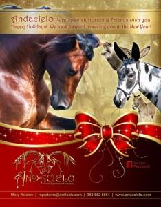 Christmas_Andacielo_web_orig