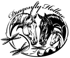 DrafonflyHollow