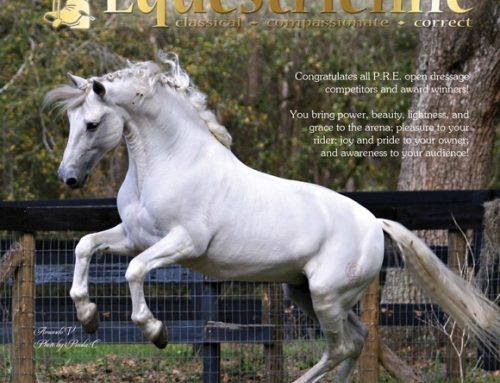 J'Equestrienne