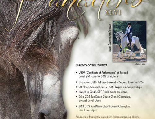 The P.R.E. Horse Magazine (Special Edition 2014)
